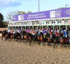 Breeders' Cup Skinny: Pre-Entries Instant Reaction