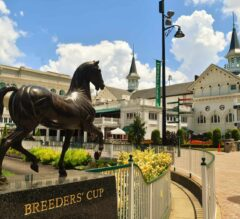 FREE Win Picks for Churchill Downs Breeders' Cup Saturday Races