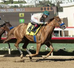 Racing Dudes Divisional Rankings 11/21/18: Baffert Loaded with 2-Year-Olds