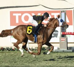 Flying Scotsman Flies Off Strongly in G3 Cecil B. DeMille