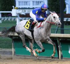 Racing Dudes Fantasy League Update: Smarty Jones Stakes Holds Major Importance