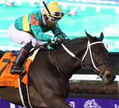 Hot Springs Makes the Grade in G3 Commonwealth Turf