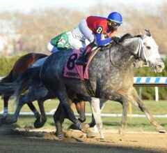 Life in Shambles Up in Time in G3 Fall Highweight