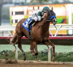 Mucho Gusto Prevails in G3 Bob Hope