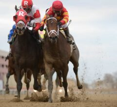 Village King Wins G3 Red Smith