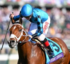 Stormy Liberal Safeguards Turf Sprint Title