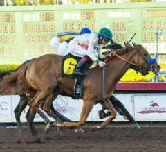 Chasing Yesterday Triumphs in Tight G1 Starlet