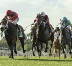 River Boyne Runs Big in G2 Mathis Brothers Mile