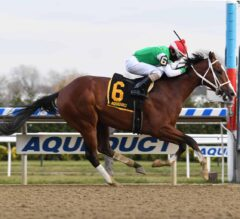 Derby Trail Tracker: Holy Bull, Lewis, & Withers Time