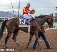 New Plans for McKinzie Keep Him Home in California