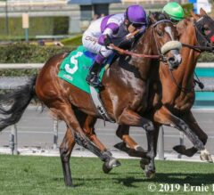 Listing Captures $100,000 Cal Cup Turf Sprint