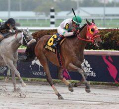 Aztec Sense Gives Navarro Win #1,000 in G3 Fred W. Hooper