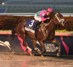 City of Light Swan Dives into History in G1 Pegasus World Cup