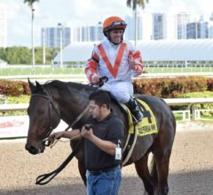 Racing Dudes Three Stars of the Week: Doctor Mounty Storms Home