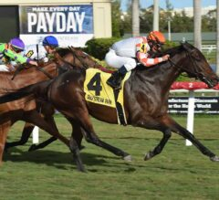 Doctor Mounty Prescribes Victory in G3 Tropical Turf