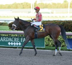 Racing Dudes Three Stars of the Week: 3-Year-Old Racing in Full Force