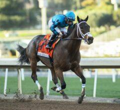 Racing Dudes Three Stars of the Week: Roy H Sizzles at Santa Anita