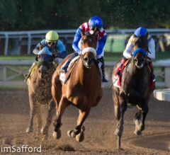 Somobombs: Oaklawn and Gulfstream Park Picks for April 25, 2020