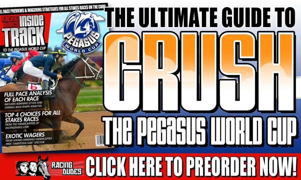 Pegasus World Cup Picks