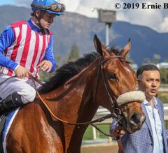 Desert Stormer Stakes Preview: Bellafina Seeking to Right Ship Back Home