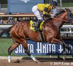 Galilean Cruises in Cal Cup Derby