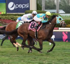 Hembree sets track record in $100,000 El Prado