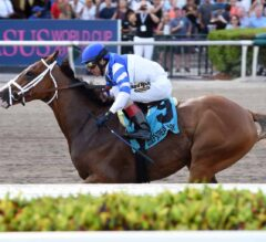 Prince Lucky Makes the Grade in Hal's Hope