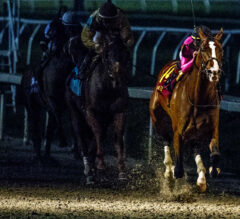 FREE Win Picks for Louisiana Derby Day at Fair Grounds