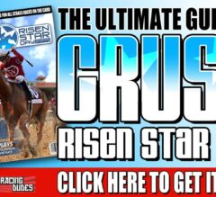 2019 Risen Star Picks and Wagering Guide from Fair Grounds