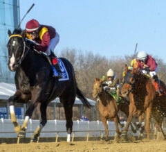 Uncontested Unchallenged in G3 General George
