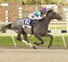 Wood Memorial Preview: Wide Open Field Takes Aim at Kentucky Derby