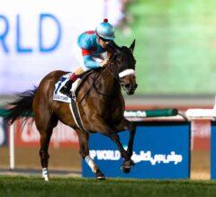 "Almond Eye ""An Equine Masterpiece"" In Dubai Turf"