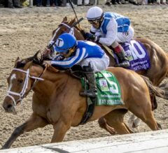 By My Standards Returns to Stakes in Powerhouse New Orleans Classic