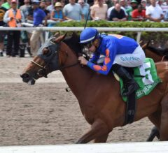 Champagne Anyone Pops Off In Gulfstream Park Oaks