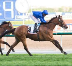 Cross Counter Outduels Ispolini In Dubai Gold Cup