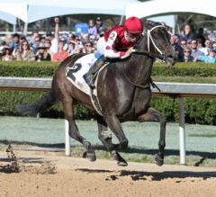 Midnight Bisou Proves Her Quality In Azeri