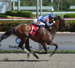 Mott's Mucho Returns a Winner Friday at Gulfstream Park