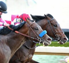 Racing Dudes Three Stars of the Week: Oaklawn Puts on a Show