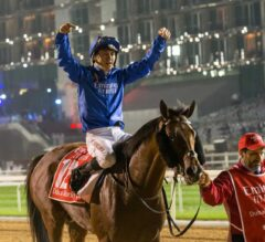 Thunder Snow Crowned Dubai World Cup Champion