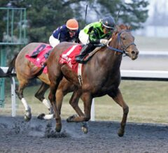 Nun the Less Drives Home Victorious in Kentucky Cup Classic