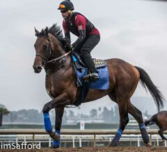 2019 Kentucky Derby Early Pace Projection: Part 1