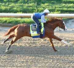 Top 5 Most Productive Kentucky Derby Preps