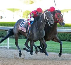 Midnight Bisou Nips Escape Clause To Clinch Apple Blossom