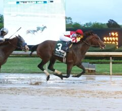 Omaha Beach Storms Home Gamely In Arkansas Derby