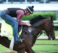 Kentucky Derby Favorite Omaha Beach to Scratch, Revised Morning Line Odds