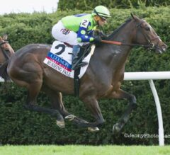 Rushing Fall Rockets Gate To Wire In Jenny Wiley