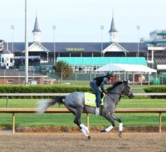 2019 Kentucky Derby Pace Thesis & Picks
