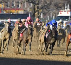 Market Maven Steps Up In Class For Wood Memorial