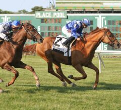 Almanaar Keeps Synchrony at Bay in Monmouth