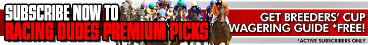 Breeders' Cup Picks